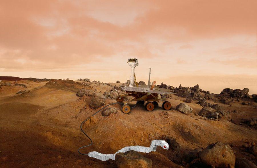 Impressão artística de um robô-cobra e um rover em Marte (Imagem: James Steidl/Shutterstock.com)