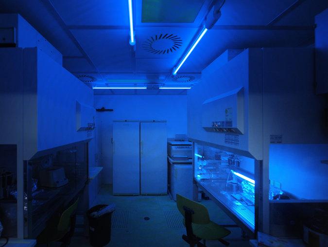 """O laboratório onde os pesquisadores realizaram sua pesquisa no antigo DNA no """"Denisova 2"""" no Max Planck Institute for Evolutionary Anthropology. Crédito: Frank Vinken"""