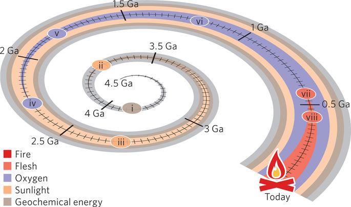 Eventos-chave durante a evolução das expansões de energia na terra. (i) A vida emerge; A época da geoquímica começa. (ii) Fotossíntese anoxigênica: início da segunda época de energia, luz solar. (iii) Emergência de cianobactérias. (iv) Ótimo evento de oxidação: terceira época de energia, oxigênio. (v) Aparecem prováveis fósseis eucarióticos. (vi) Aparecem fósseis de algas vermelhas. (vii) Início da quarta época de energia, carne. (viii) as plantas vasculares colonizam a terra. O fogo aparece na terra. Finalmente, os cepos de queima indicam o início da quinta época de energia, o fogo. As datas de (i) - (iii) são altamente incertas. Para (i) tem-se a data mais antiga para a qual há evidências consistentes com a vida. (ii) tem a data mais antiga para a qual há evidências da fotossíntese. Em (iii), tem a data atualmente apoiada por evidências fósseis para a presença de cianobactérias. As marcas em forma de riscos representam intervalos de 25 milhões de anos. Figura desenhada por F. Zsolnai.