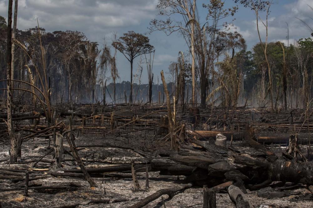 https://socientifica.com.br/wp-content/uploads/2018/03/Mudanca-climatica-Foto-Flavio-Forner-InfoAmazonia-1000x667.jpg