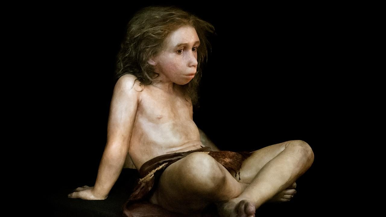 https://socientifica.com.br/wp-content/uploads/2018/04/neandertal-boy.jpg