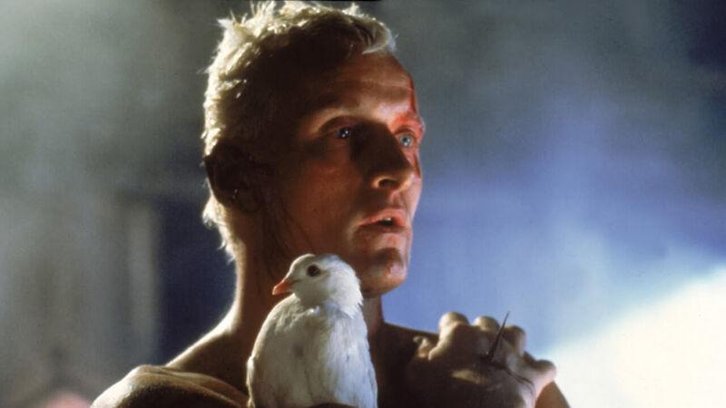 Blade Runner, uma introdução ao estoicismo(II): o ideal de comunidade cósmica