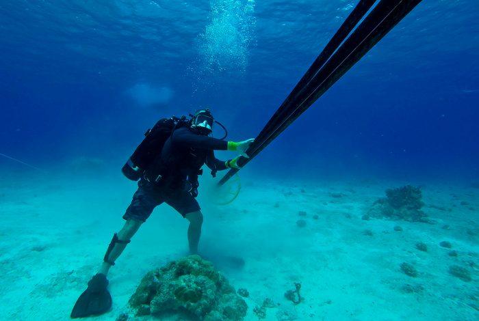 https://socientifica.com.br/wp-content/uploads/2019/07/cabo-de-internet-submarino.jpg