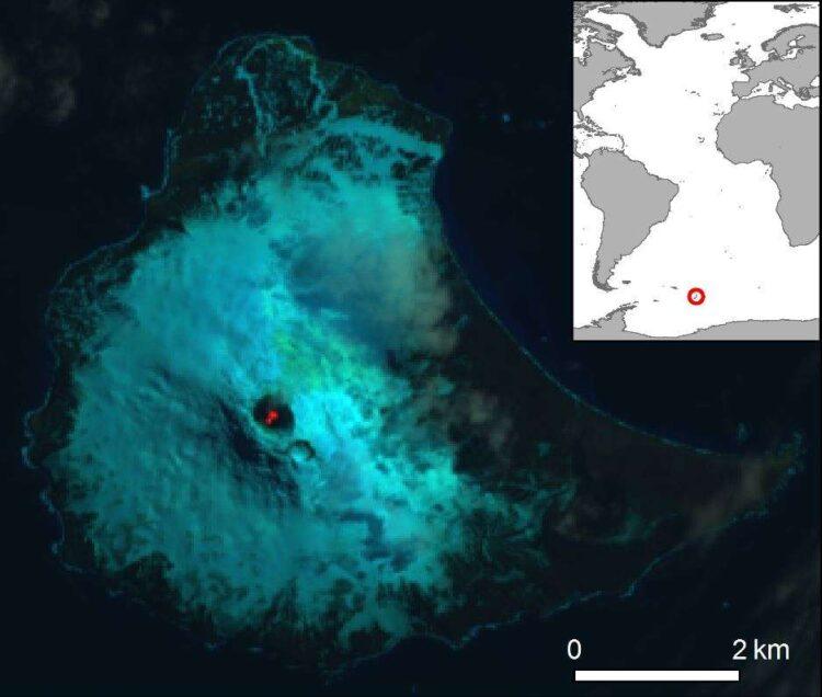 Imagem: Landsat/British Antarctic Survey/D.M.Gray et al.