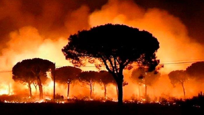 https://socientifica.com.br/wp-content/uploads/2019/08/Amazônia-em-chamas-2.jpg