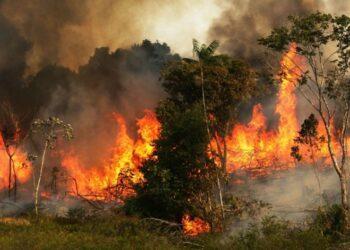 Um incêndio queima árvores ao lado de pastagens na bacia amazônica em Zé Doca, Maranhão. (Foto: Mario Tama/Getty Images)