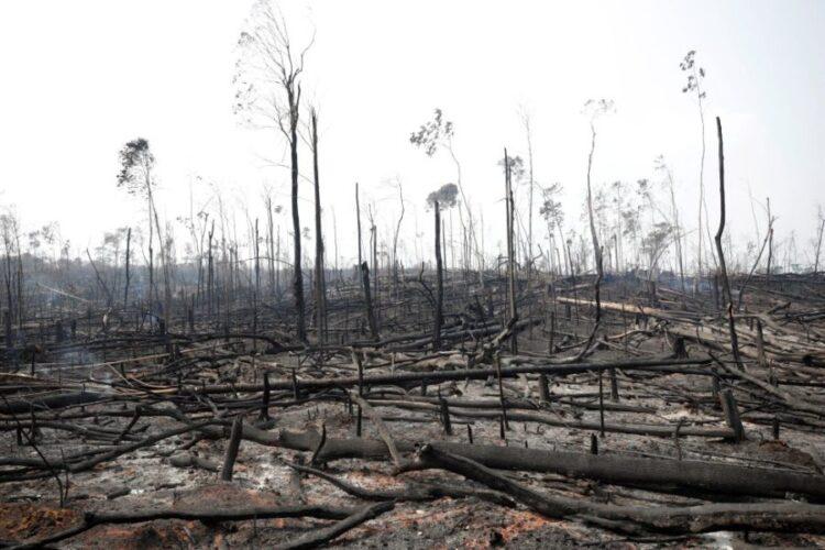 (Ueslei Marcelino/Reuters)