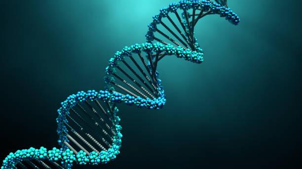 https://socientifica.com.br/wp-content/uploads/2019/09/BioGenoma-da-Terra-2.jpg