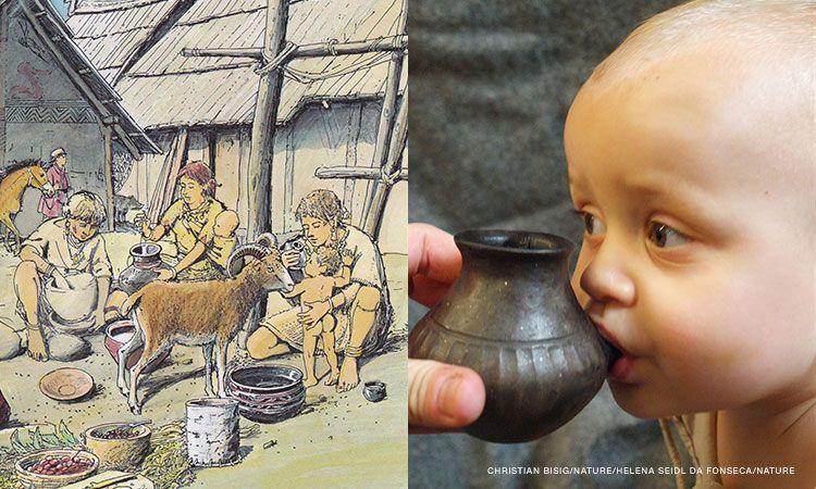 https://socientifica.com.br/wp-content/uploads/2019/09/Mamadeiras-com-resíduos-de-leite-de-3.000-anos-encontradas.jpg