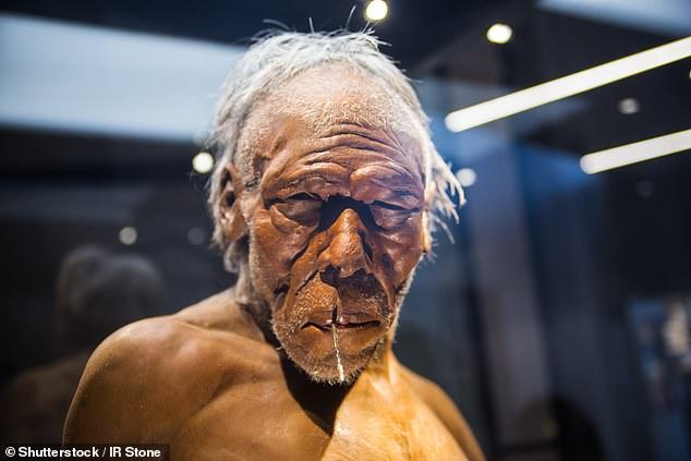 https://socientifica.com.br/wp-content/uploads/2019/09/Neandertais.jpg