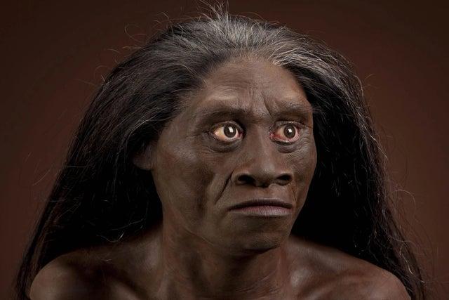 https://socientifica.com.br/wp-content/uploads/2019/10/hobbits-da-ilha-flores-homo-floresiensis.jpg