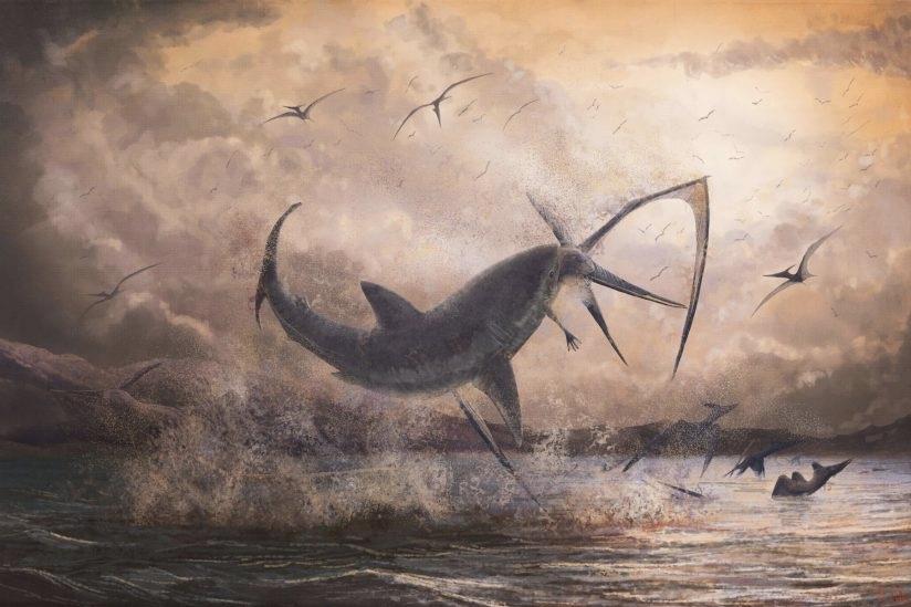 https://socientifica.com.br/wp-content/uploads/2019/12/Dente-de-tubarão-capa.jpg