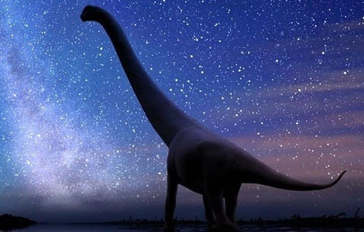Reconstrução artística de um saurópode que pertence a um grupo de dinossauros gigantes que viveu em áreas polares há 145 milhões de anos. Por Andrey Atuchin.