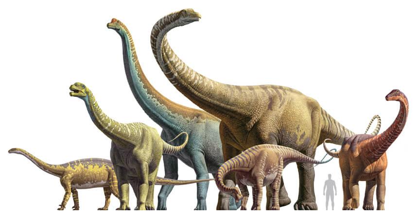 Representação artística dos alguns dinossauros gigantes que faziam parte dos saurópodes.