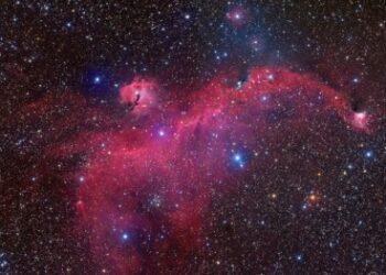 O formato peculiar assumido pelo aglomerado de estrelas, gás e poeira foi objeto de pesquisa conduzida na USP e no Institut d'Astrophysique de Paris; resultados indicam que a nebulosa é parte de uma estrutura em concha produzida pela explosão de três estrelas supernovas (foto: Bob Franke)