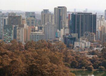 Vista do Parque do Ibirapuera, área verde localizada em São Paulo. (Imagem: Sérgio Valle Duarte/Wikimedia Commons)