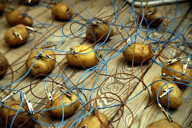 O sistema da bateria de batatas é significativamente mais barato, mas porque ninguém está interessado? (Imagem: Mogens Jacobsen)