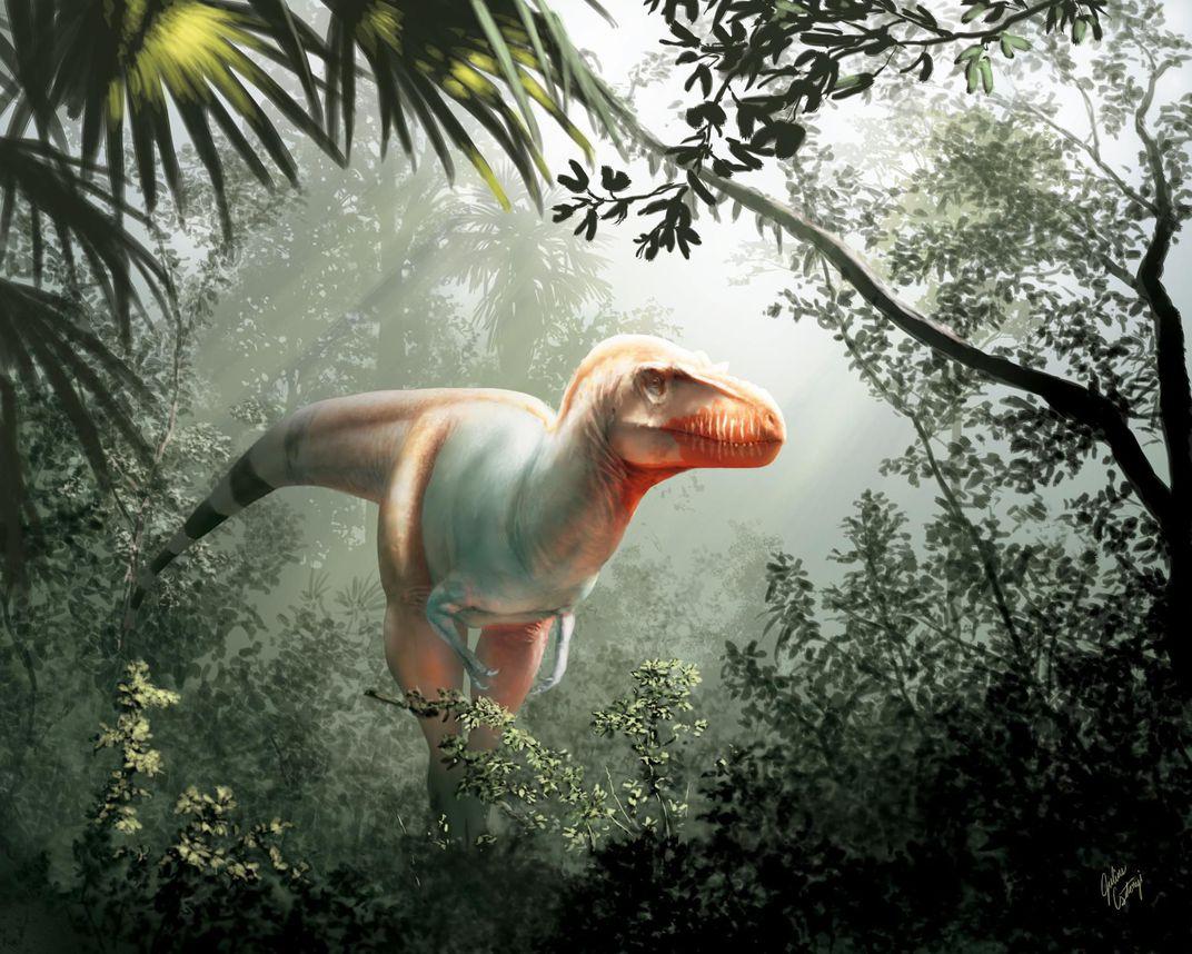 Os pesquisadores estimam que o ceifador da morte tinha cerca de 6 metros e era um predador de de dois pedais, assim como o T. Rex. (Ilustração de Julius Csotonyi)