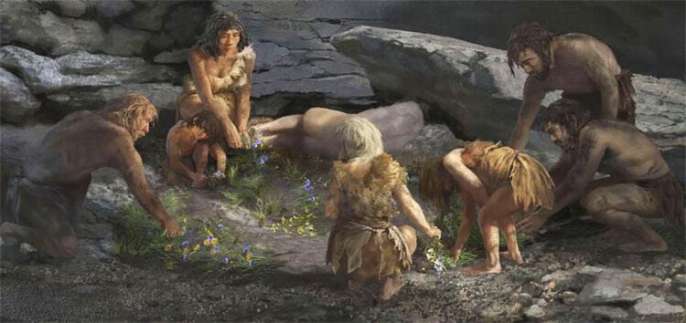 A sepultura traz evidências de que os neandertais colocavam flores nas sepulturas de seus mortos. (Imagem: Karen Carr)