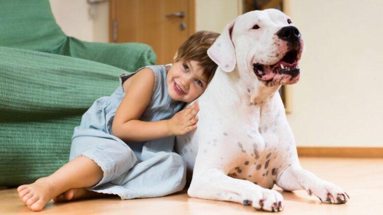 Um estudo publicado no Journal of Pediatrics mostrou que crianças que crescem com animais de estimação em casa tem 20% menos chances de desenvolver problemas sociais e emocionais na vida adulta.