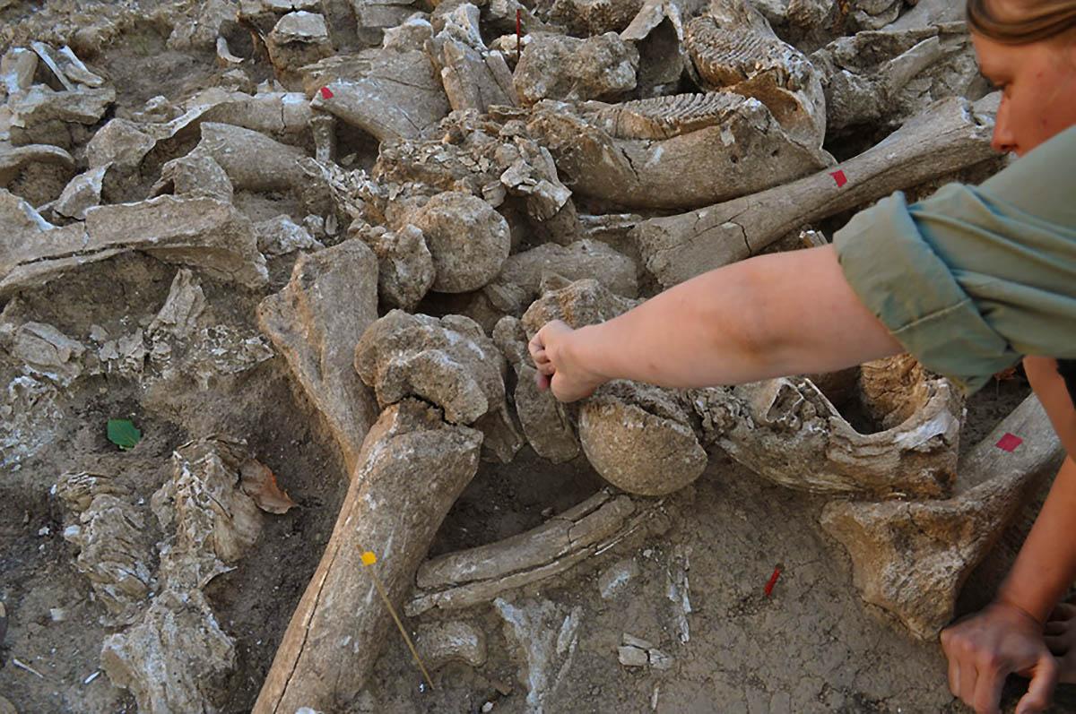 Um membro da equipe trabalhando no templo da Era do Gelo recém descoberto. (Imagem: A. J. E. Pryor et al., 2020 / Antiquity)
