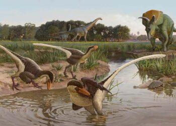 O Dineobellator notohesperus era um dinossauro aviário (coberto de penas). Imagem: Sergey Krasovskiy.