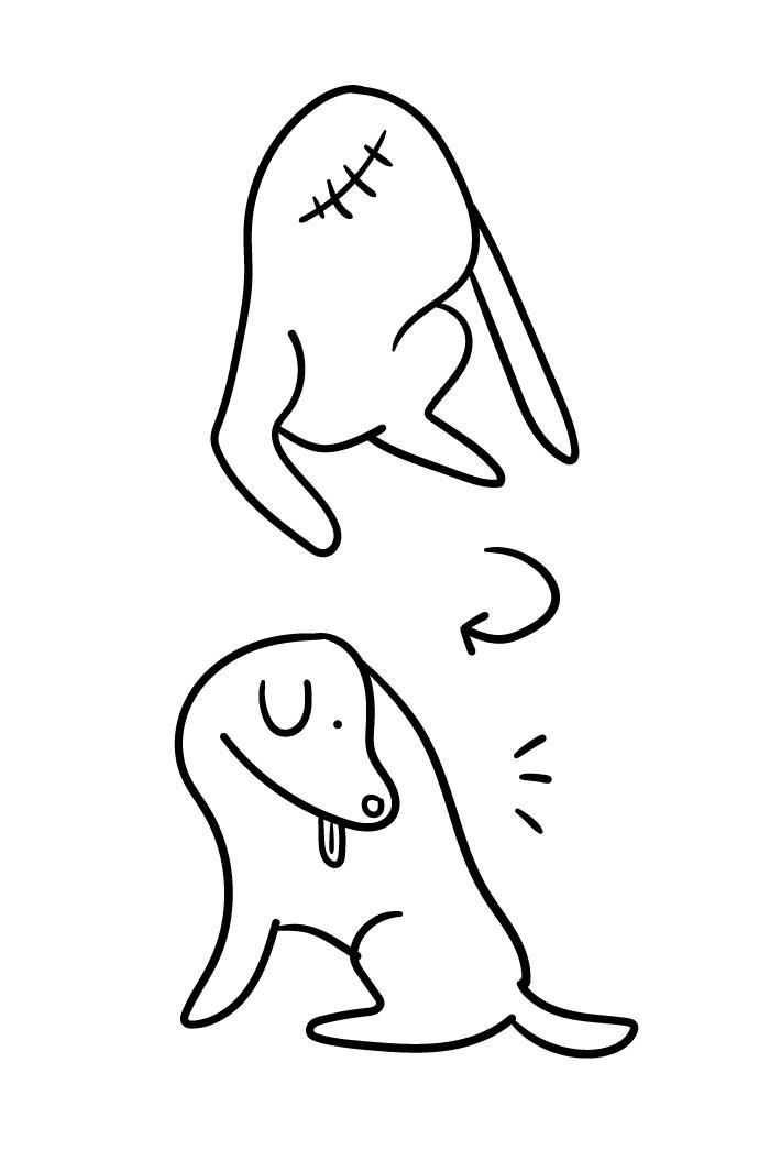 Talvez esta ilustração te ajude a melhor entender este cachorro da foto.