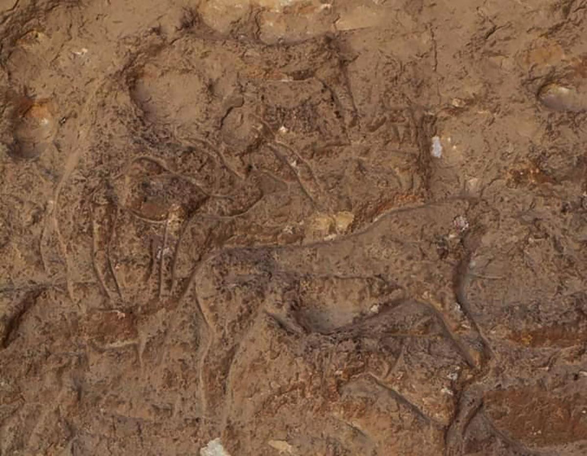 A maioria das esculturas misteriosas projetava-se para fora da superfície das paredes da caverna. Foto cedida pelo Ministério de turismo e Antiguidades do Egito.