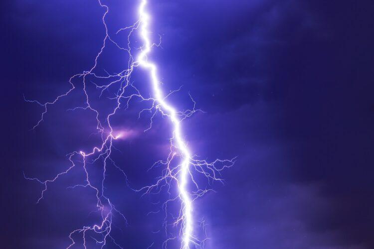 Atividade elétrica em organismos