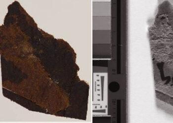 Fragmentos dos Manuscritos do Mar Morto com escrita visível. (Universidade de Manchester)