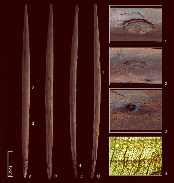 vara de caça de 300.000 anos