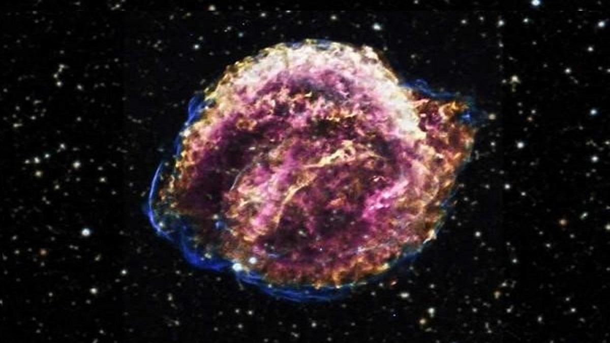 supernova Kepler