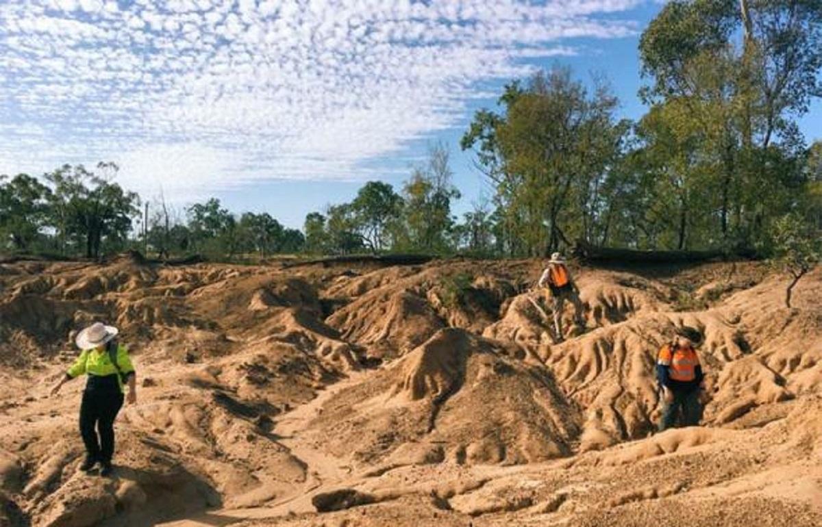 Humanos viveram ao lado de lagartos e marsupiais gigantes na Austrália