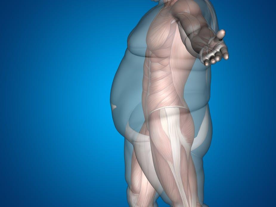 Perder peso é mais difícil do que parece