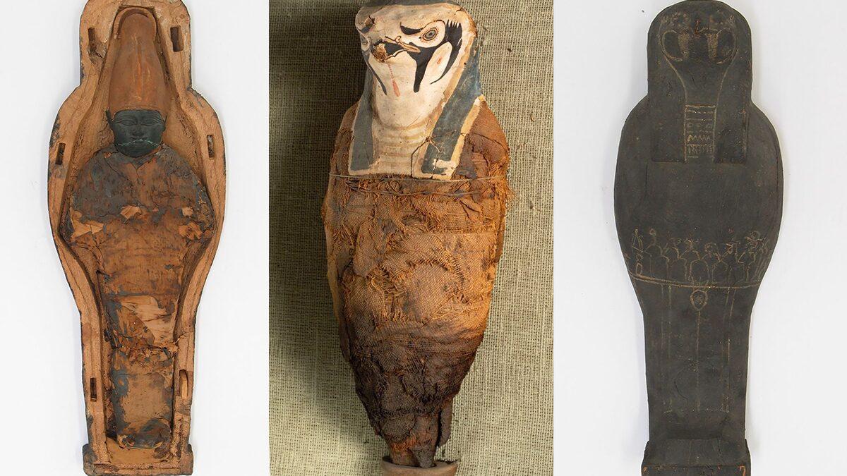 Conteúdo de múmia antiga surpreende pesquisadores