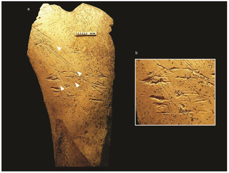 (Imagem: UCL Institute of Archaeology)