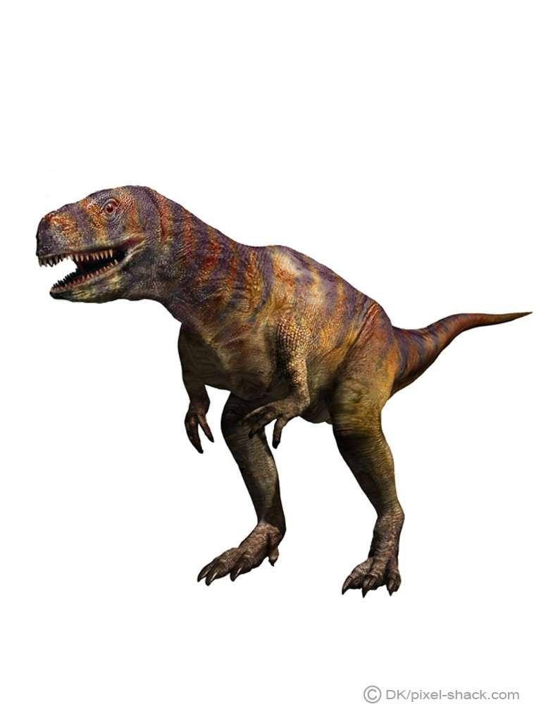 Futura Sciences, https://www.futura-sciences.com/planete/photos/paleontologie-top-10-dinosaures-vous-ne-voudriez-jamais-croiser-677/paleontologie-abelisaure-abelisaurus-carnivore-bipede-4479/