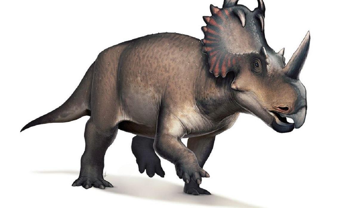 cancer-em-dinossauro.jpg3