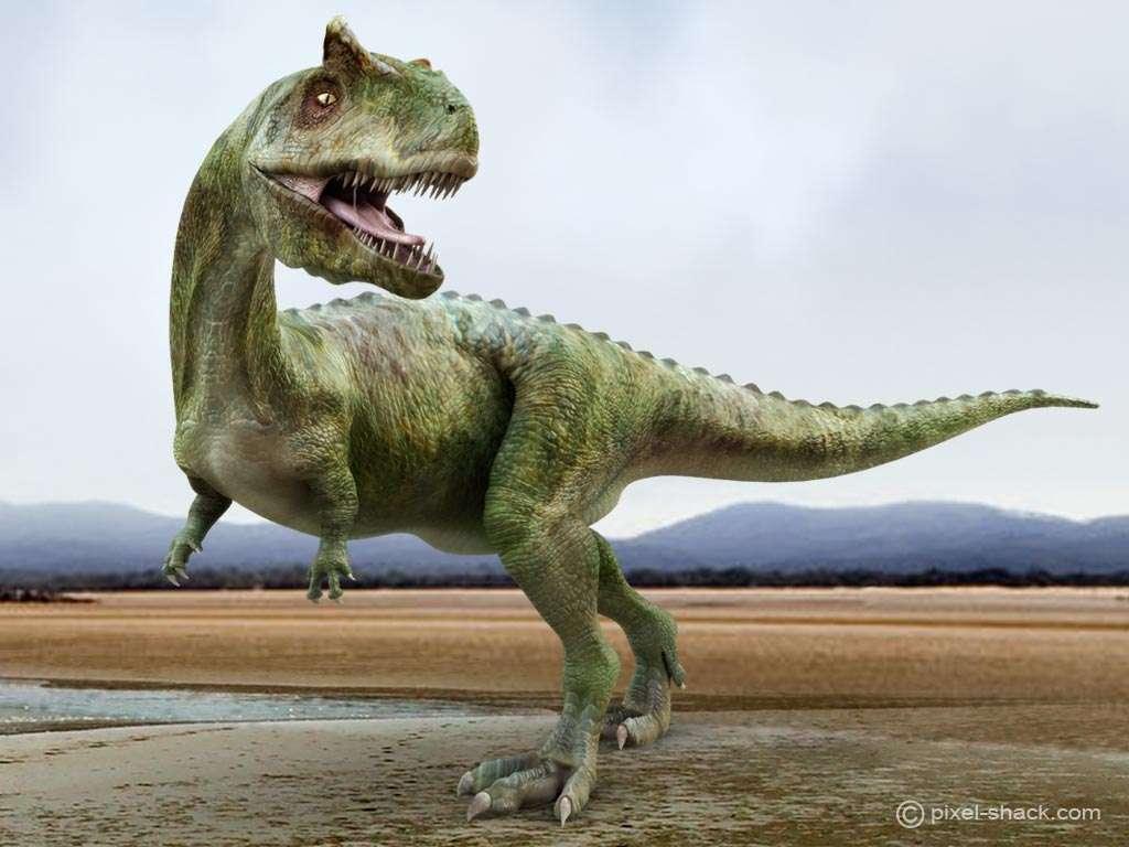 Futura Sciences, https://www.futura-sciences.com/planete/photos/paleontologie-top-10-dinosaures-vous-ne-voudriez-jamais-croiser-677/paleontologie-carnotaure-carnotaurus-4478/