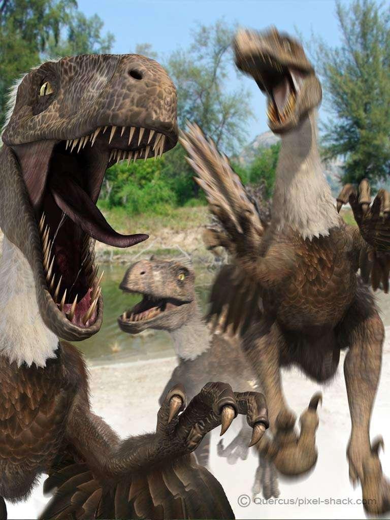 Futura Sciences, https://www.futura-sciences.com/planete/photos/paleontologie-top-10-dinosaures-vous-ne-voudriez-jamais-croiser-677/paleontologie-deinonychus-petit-dinosaure-griffes-terrifiantes-4476/