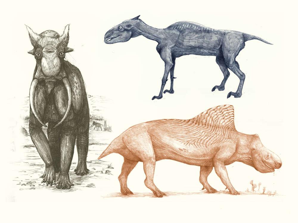 Elefante, cavalo e rinoceronte.