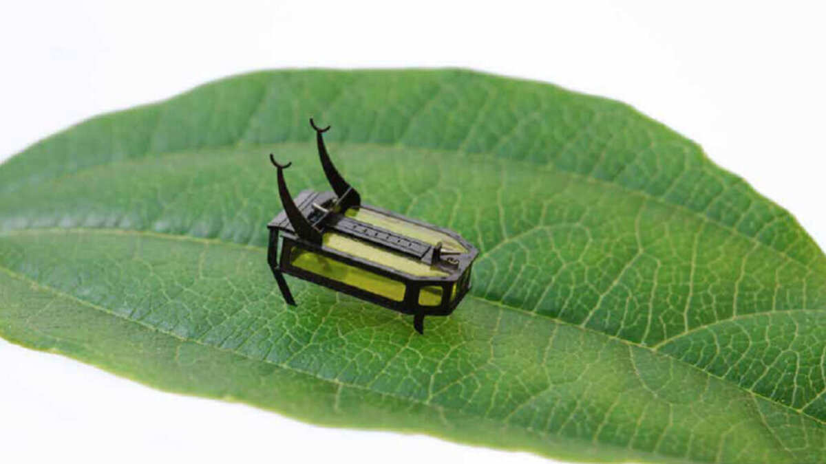 Science News, https://www.sciencenews.org/article/methanol-fuel-beetle-robot