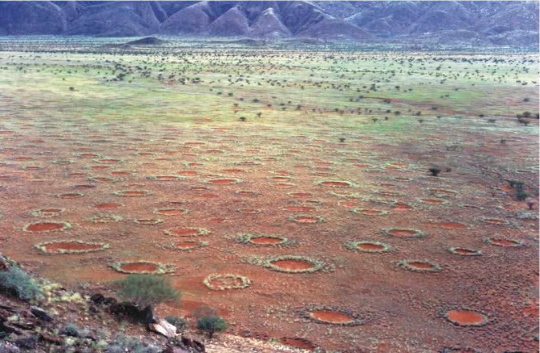 círculos de fadas Namíbia