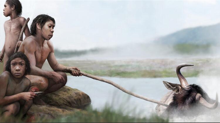 Primeiros hominídeos cozinharam em fontes termais