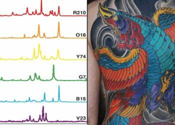 Em uma paleta de cores de tinta de tatuagem, cada cor carrega uma impressão digital espectral exclusiva que pode ser usada como um código de barras de imagem para melhor identificar e detectar tumores. (Tatuagem e design criado por Adam Sky)