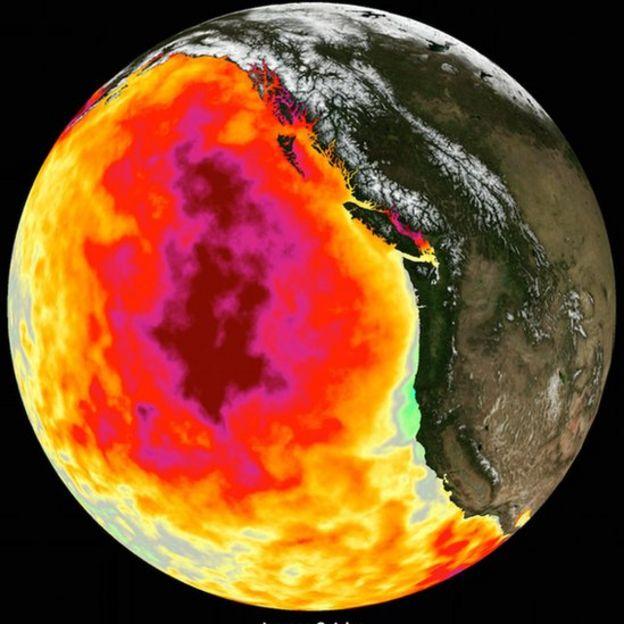 bolha quente no oceano