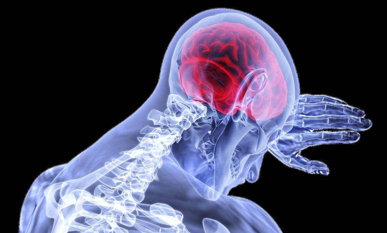 pressão arterial e cérebro