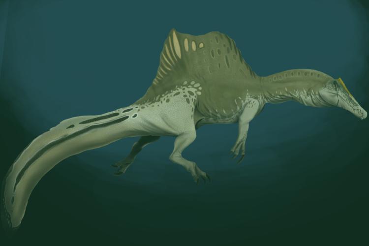 representação artística do espinossauro