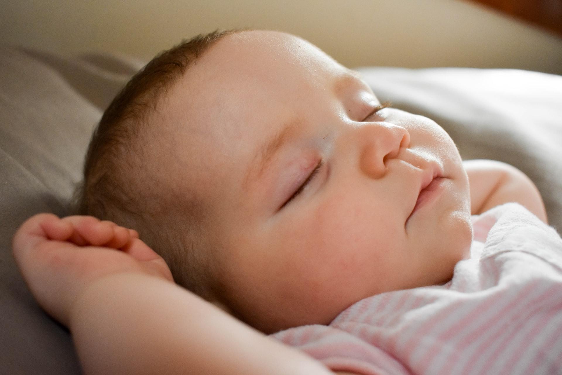 Porque filhotes dormem tanto?