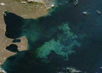 Floração de fitoplâncton na Argentina. (NASA Visible Earth)